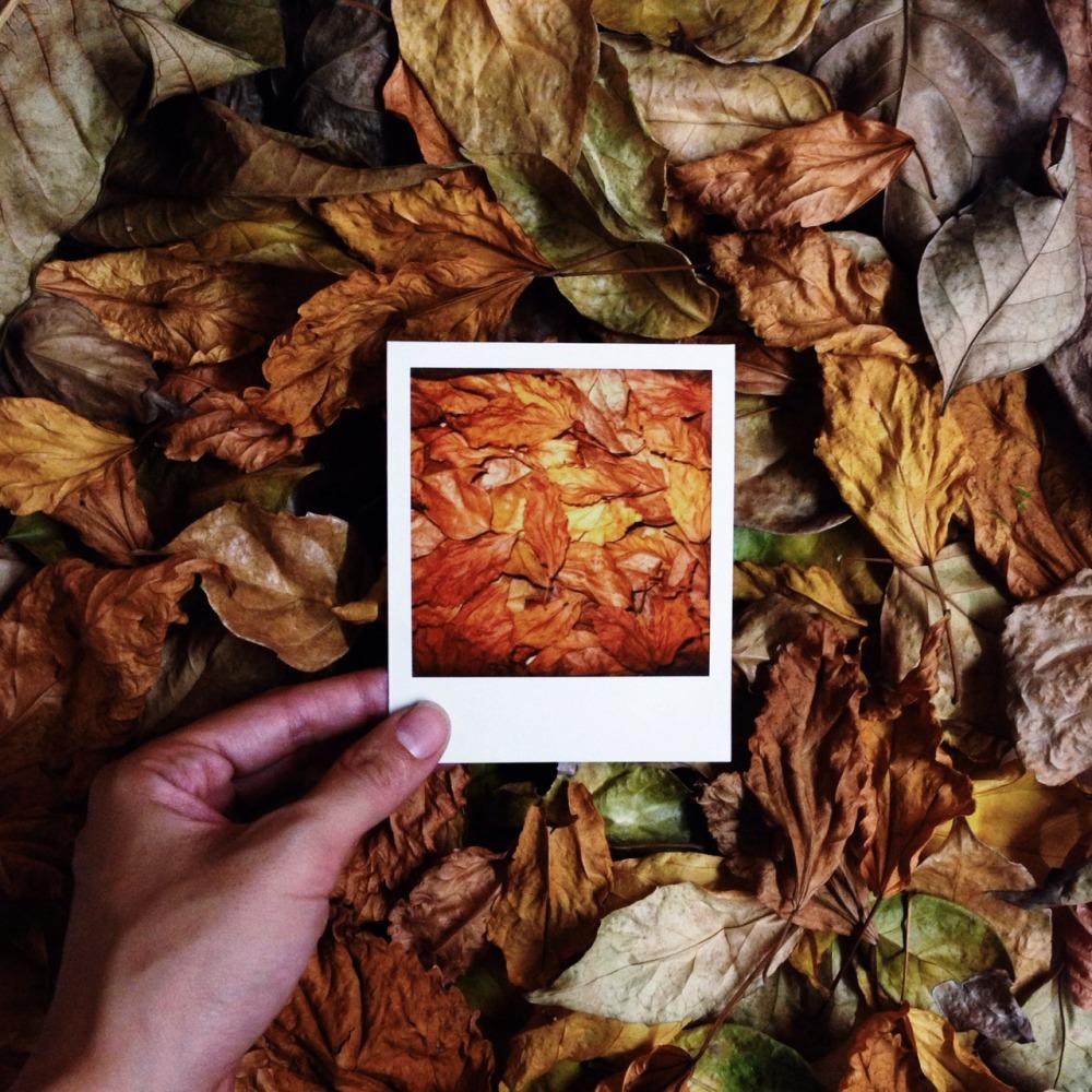 Polaroid_auntiegold_1