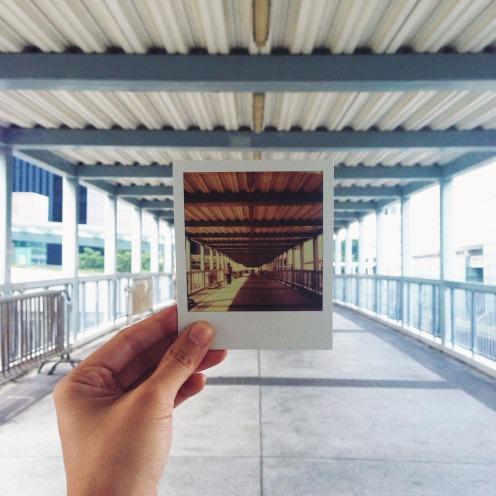 Polaroid_auntiegold_2
